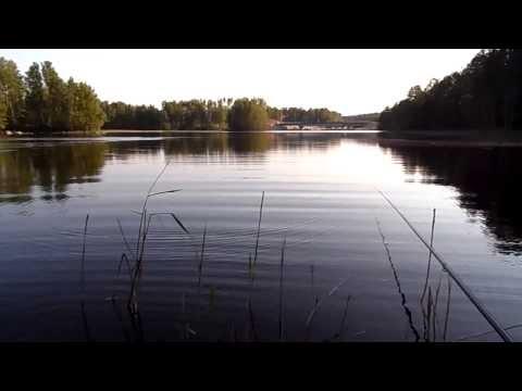 рыбалка на вуокса вирта