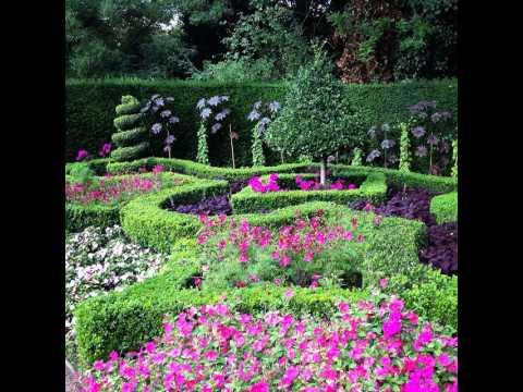 #giglio #flower #flowers #flora #plant #nature #natural #pink #garden #beautiful #love #summer #fl