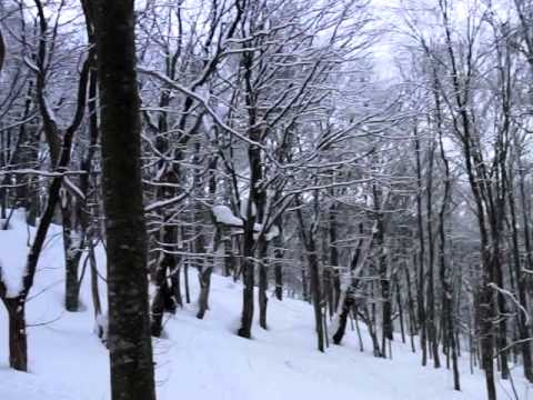 乳頭温泉ぶな森スキーツアー