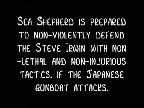 Sea Shepherd News: Japan May Resort to Gunboat Diplomacy in Antarctic Waters