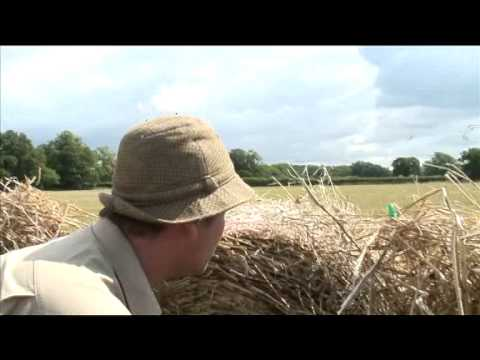 Pigeon shooting with Mark Gilchrist