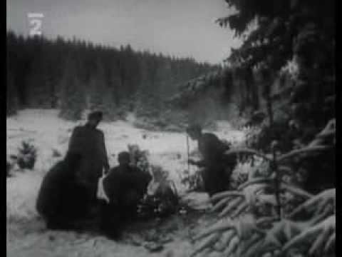 Ťažba dreva na Orave v roku 1960