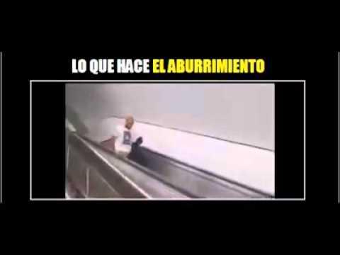 Videos graciosos(6)