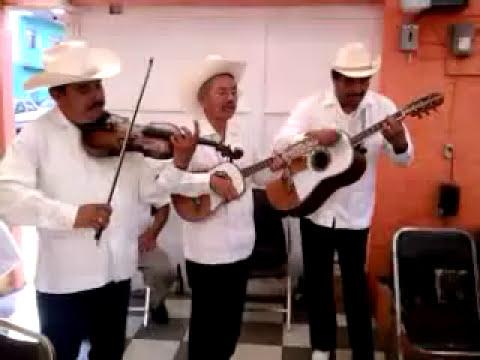 TRIO ARMONIA HUASTECA EL FANDANGUITO
