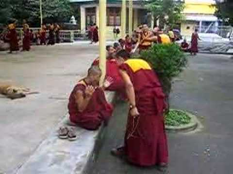 Tibetan Monks Debate in Dharamsala Music Videos