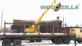 Unloading of pine logs from the railway wagons to trucks | Ukraine, Vasilkov