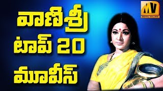 Heroine Vanisri Top 20 Telugu Movies |