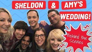 The Big Bang Theory: Sheldon & Amy