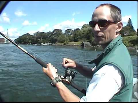 Striped Bass New Hampshire - Get-Reel Fishing