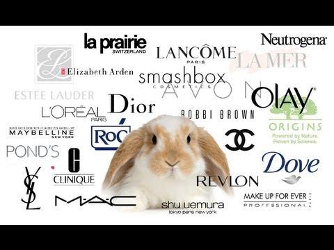 ANIMAL TESTING - MAKEUP COMPANIES AND THE EU BAN - YouTube