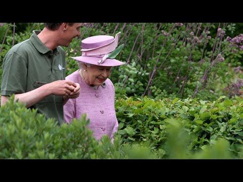 Queen Elizabeth II Growing Magic Mushrooms In Royal Garden