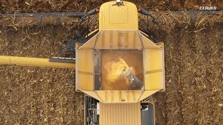 LEXION Corn Harvest World Record / 2018 / EN-NA