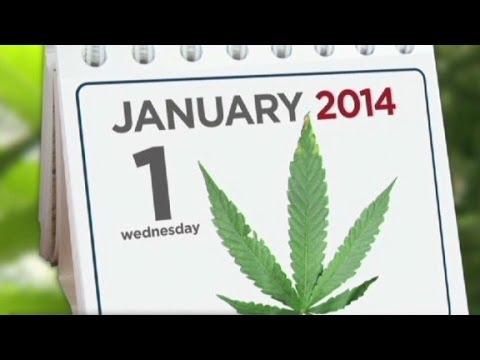 Colorado marijuana business: We're the Amsterdam of ...