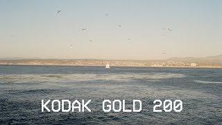 Kodak Gold 200 // Canon AE-1P // Pebble Beach