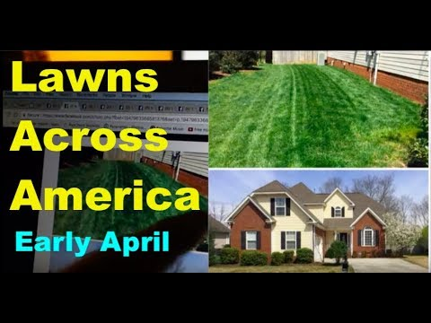 Lawns Across America - Early April 2018