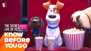 Know Before You Go: The Secret Life of Pets 2 | Movieclips Trailers