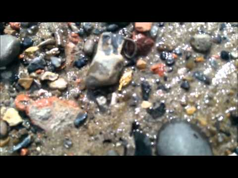 Metal Detecting  Tudor GOLD and Silver Hammered River Thames Mudlarking 1