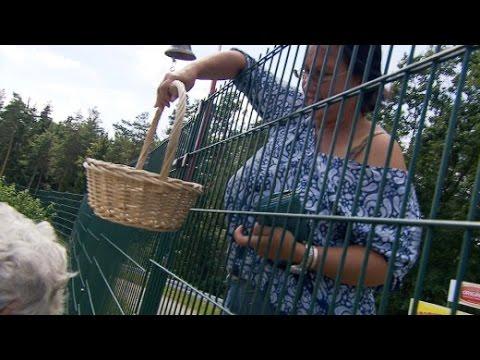 Es geht um die Wurst: Schildbürgerstreich in Thüringen