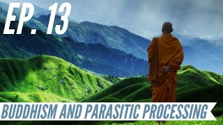 Ep. 13 - Awakening from the Meaning Crisis - Buddhism and Parasitic Processing