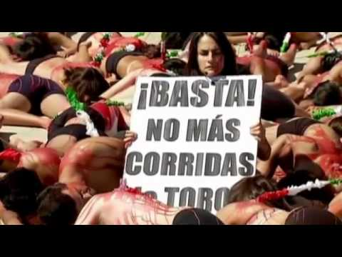 Animal Rights Activists in Mexico protesting over bull fighting
