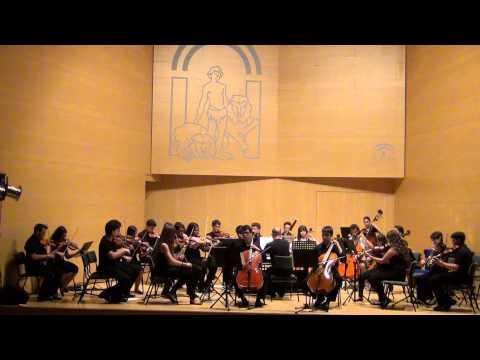 Concierto F III, n.2 P411 para dos violonchellos y orquesta. A. Vivaldi. 1º Mov.