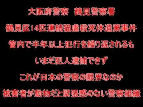 福岡猫虐待事件Japan animal 動物の虐待行為」 Youtube