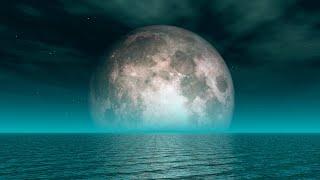 Relaxing Live Sleep Music 24/7: Deep Sleeping Music, Beat Insomnia, Relaxing Music, Sleep Meditation