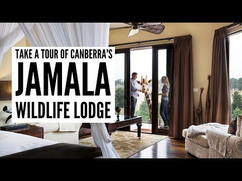 Visit Canberra and the Jamala Wildlife Lodge - The Big Bus
