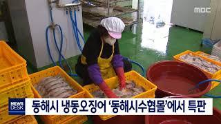 동해시 냉동오징어 '동해시수협몰'에서 특가판매