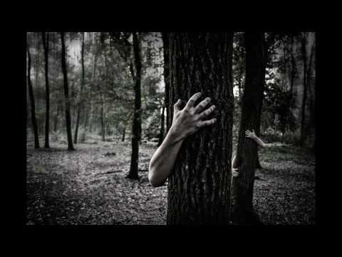 Laconic ft. Imera - Пожар в гората