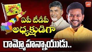Ram Mohan Naidu As AP TDP President? | Chandrababu Naidu | Nara Lokesh | AP News