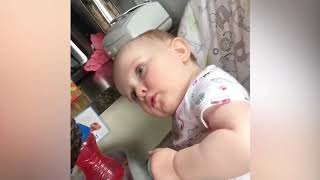 Cute Funny Baby and their pets