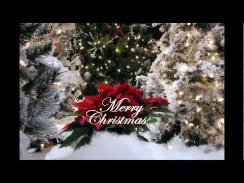 Christmas In Dixie video