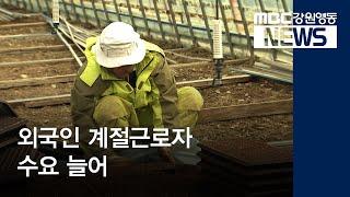 최종R)외국인 근로자가 농사 다 짓는다