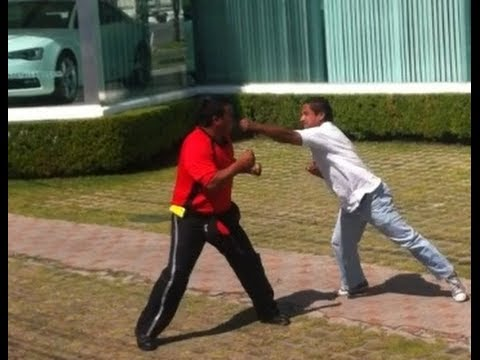 Chofer peleando con pasajero (Street Fighter version)