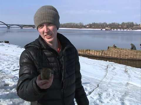 В Рыбинске активизировались искатели кладов