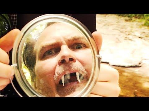 Dance Gavin Dance - Blood Wolf (Official Music Video)