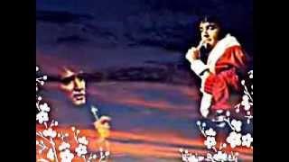 Watch Elvis Presley Seeing Is Believing video