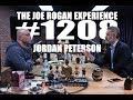 Joe Rogan Experience #1208   Jordan Peterson