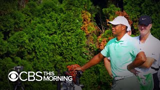 Tiger Woods withdraws from PGA tournament