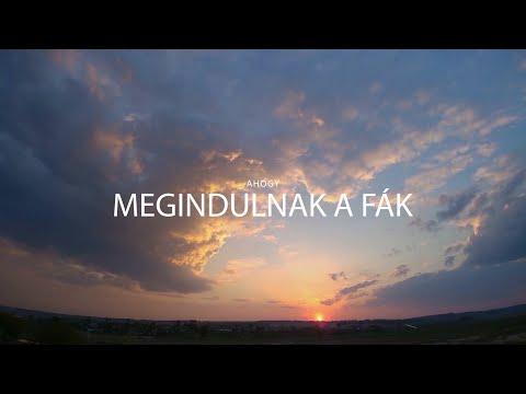 Ahogy megindulnak a fák - official lyrics videó