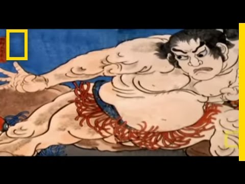 Could You Be A Sumo Wrestler? Video