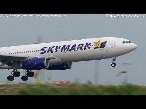 [BC's 2nd A330] Skymark Airlines (SKY) JA330B landing @ Haneda RWY22 [July 6, 2014]