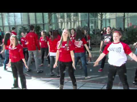 Northeastern University Flashmob - Husky Ambassadors