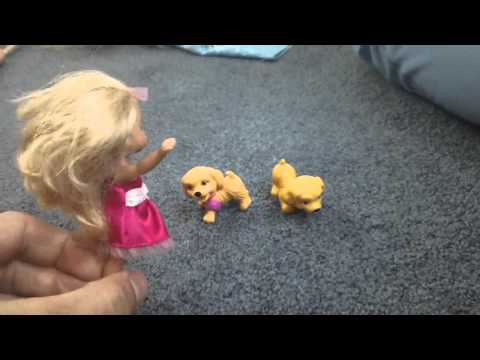 Barbie Ken Puppy Fairy Mariposa all play together Kid Friendly Video