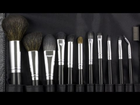 12 Piece Brush Set from Coastal Scents!