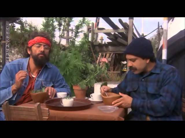 Cheech and chong  (sweet leaf by Black Sabbath) the 420 special