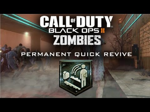 Black Ops 2 Zombies Permanent Quick Revive Easter Egg TranZit (Voice Tutorial)