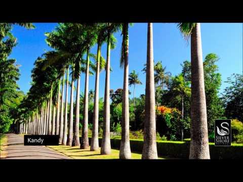 Wonders of Sri Lanka - 6 Nights, 7Days Tour