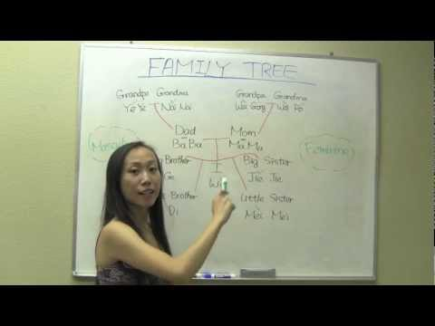 Chinese Family Tree_a